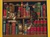 Fryderyk w bibliotece - Krystyna Bujnowicz