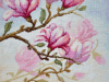 sledzinska-magnolia