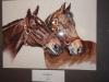 Konie-Ewa Majewska