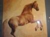 Koń w galopie-Aleksandra Dąbrowska Piotrowska